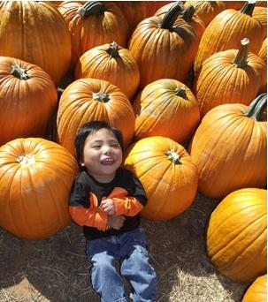 Keaton_pumpkins